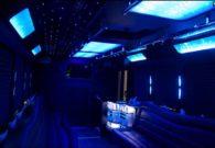 20 passenger party bus Renee's Limousine, Minneapolis Minnesota