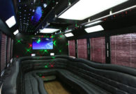 20 passenger party bus Renee's Limousine, Minneapolis Minnesota