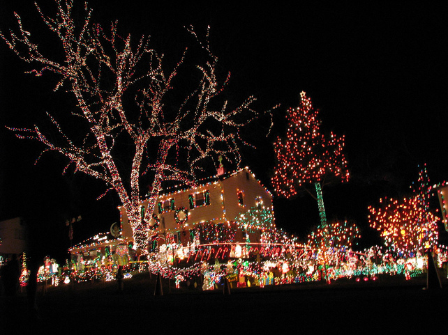 Minnesota Christmas Events.Holiday Light Tours In Minneapolis St Paul Renee S